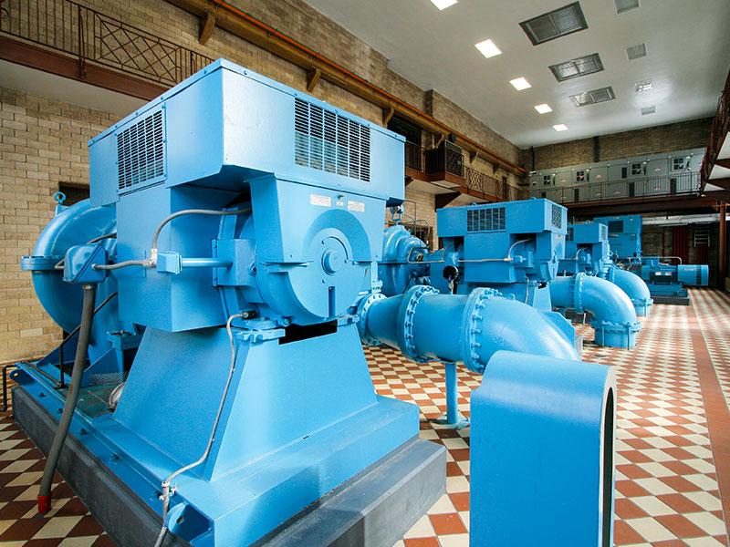Wasielewski Water Plant Close