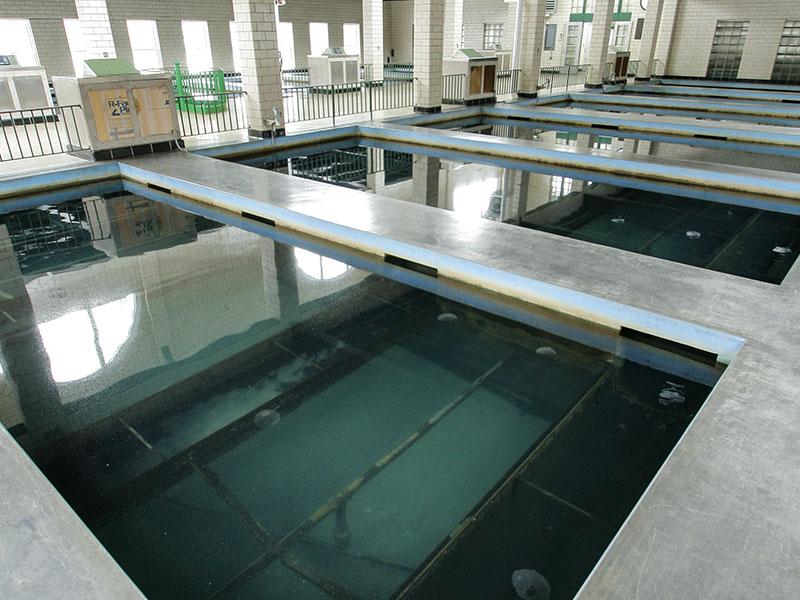 Wasielewski Water Plant Pools