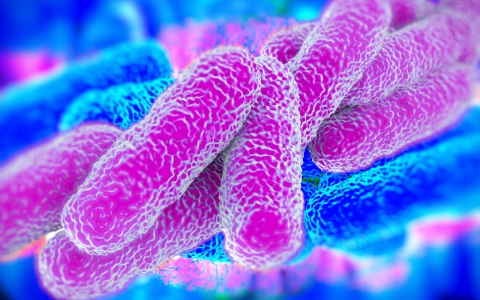 Legionella & Maintaining Healthy Water Systems
